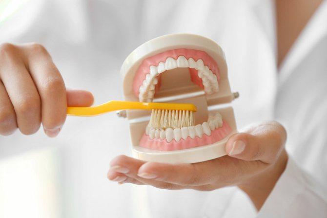 фото чистка зубных протезов